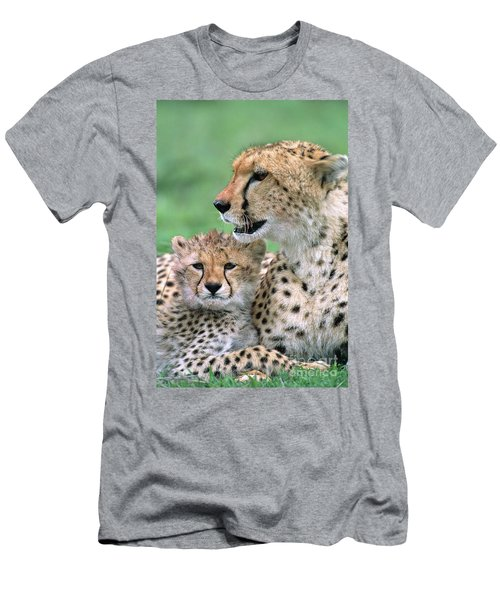 Men's T-Shirt (Athletic Fit) featuring the photograph Cheetah Mother And Cub by Yva Momatiuk John Eastcott