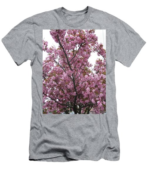 Cherry Blossoms 2 Men's T-Shirt (Slim Fit) by David Trotter