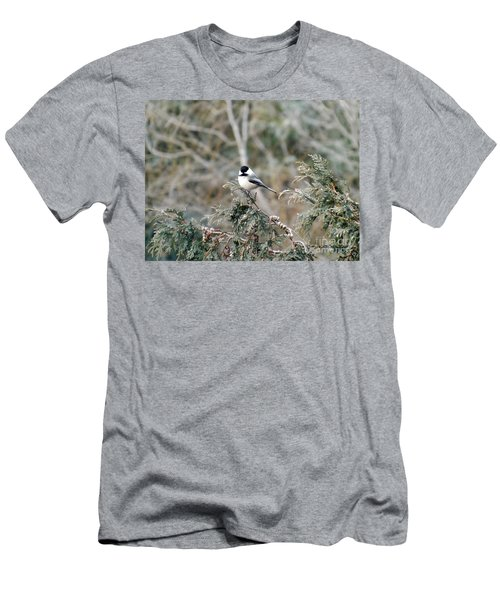 Men's T-Shirt (Slim Fit) featuring the photograph Chickadee In Cedar by Brenda Brown