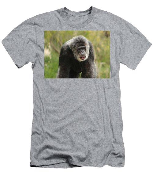 Chimpanzee Men's T-Shirt (Athletic Fit)