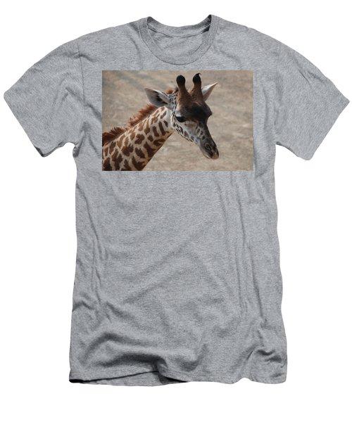 Cincinnati Sue Men's T-Shirt (Athletic Fit)