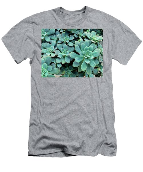 Close-up Of Plants, Buffalo And Erie Men's T-Shirt (Athletic Fit)