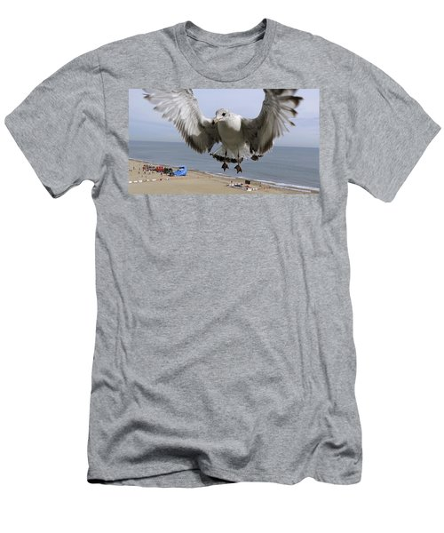 Closeup Of Hovering Seagull Men's T-Shirt (Athletic Fit)