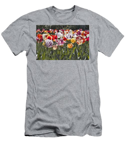 Colorful Tulips In The Sun Men's T-Shirt (Athletic Fit)