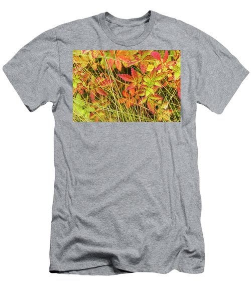 Coloured Leaves, Wild Raspberry Men's T-Shirt (Athletic Fit)