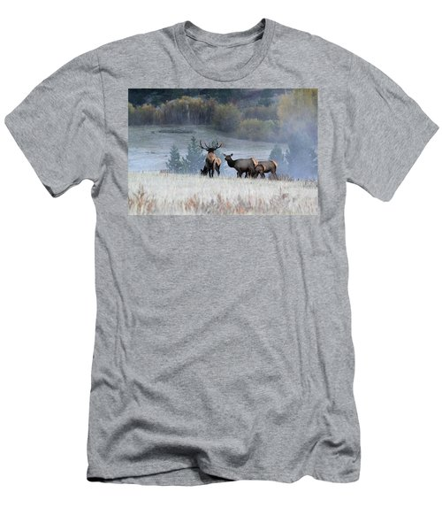 Cool Misty Morning Men's T-Shirt (Athletic Fit)