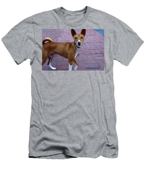 Basenji Men's T-Shirt (Athletic Fit)
