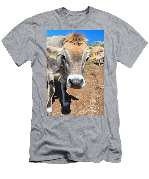 Cow On Alpine Pasture Men's T-Shirt (Athletic Fit)