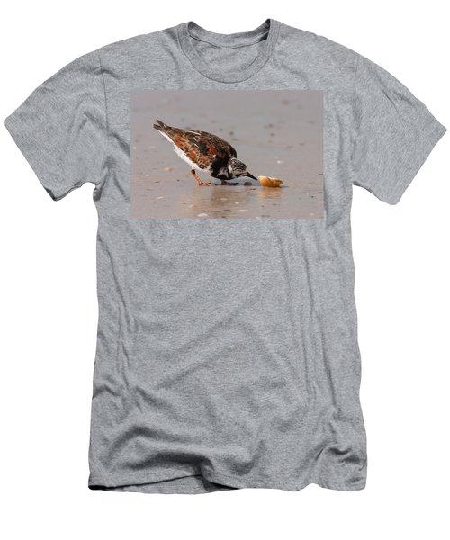 Curious Turnstone Men's T-Shirt (Athletic Fit)