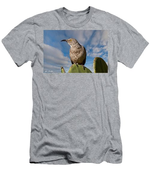 Curve-billed Thrasher On A Prickly Pear Cactus Men's T-Shirt (Athletic Fit)