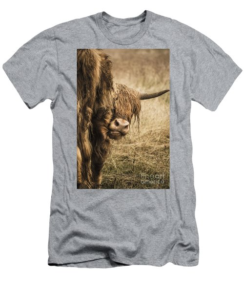 Highland Cow Damn Fleas Men's T-Shirt (Athletic Fit)