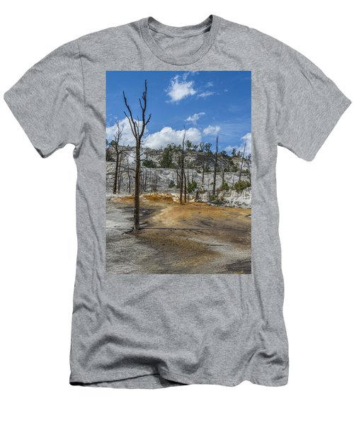 Desolation Yellowstone National Park Men's T-Shirt (Athletic Fit)