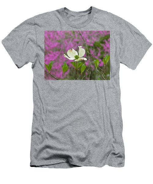 Dogwood Bloom Against A Redbud Men's T-Shirt (Athletic Fit)