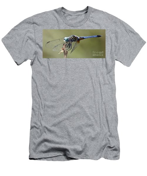 Dragonfly Smile Men's T-Shirt (Athletic Fit)