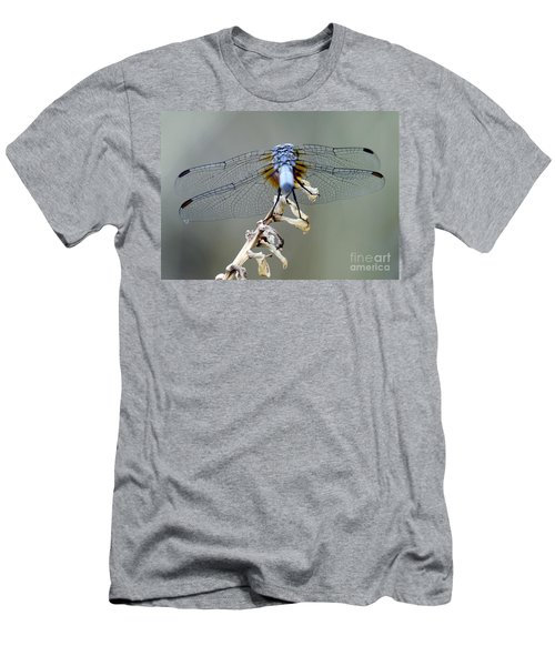 Dragonfly Wing Details II Men's T-Shirt (Athletic Fit)