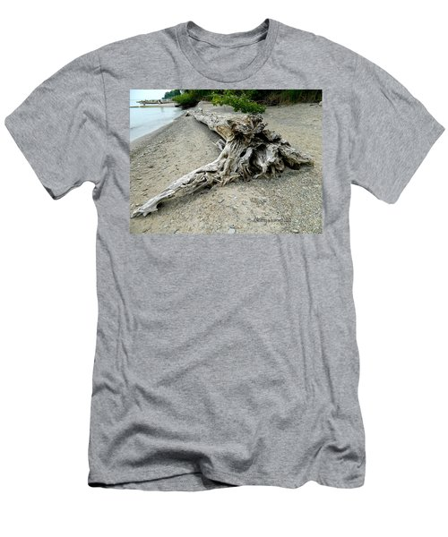 Driftwood At Lake Erie Men's T-Shirt (Slim Fit) by Kathy Barney