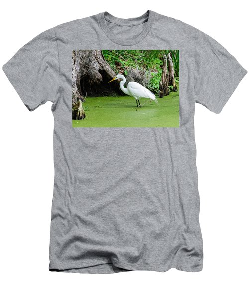 Egret Fishing Men's T-Shirt (Athletic Fit)