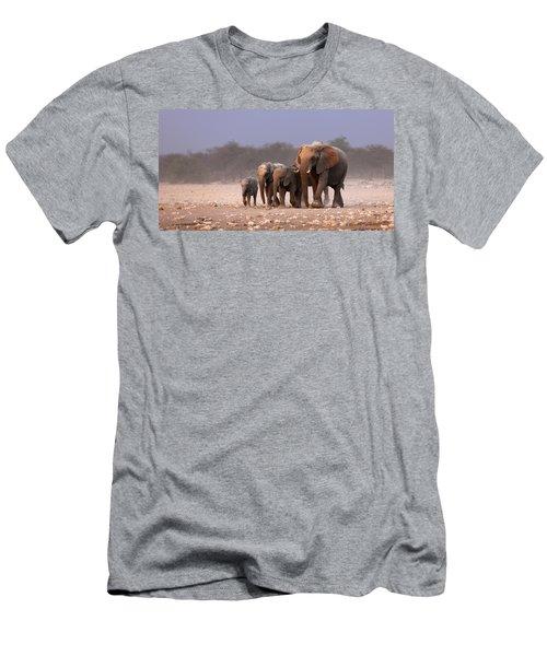 Elephant Herd Men's T-Shirt (Athletic Fit)