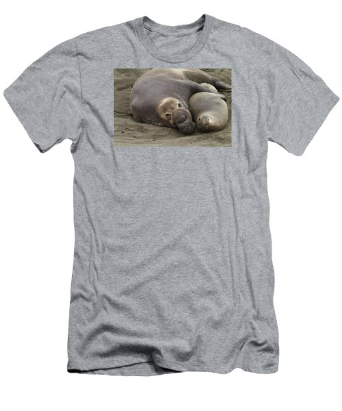 Elephant Seal Couple Men's T-Shirt (Slim Fit) by Duncan Selby
