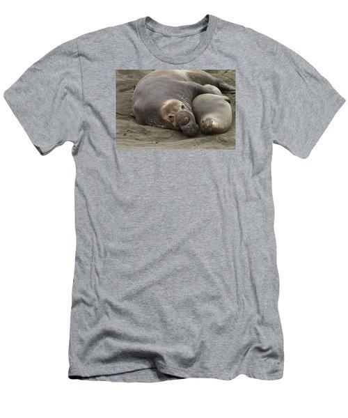 Elephant Seal Couple Men's T-Shirt (Athletic Fit)