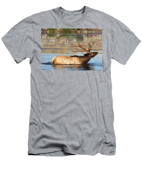 Elk Cooling Down In Lake Men's T-Shirt (Athletic Fit)