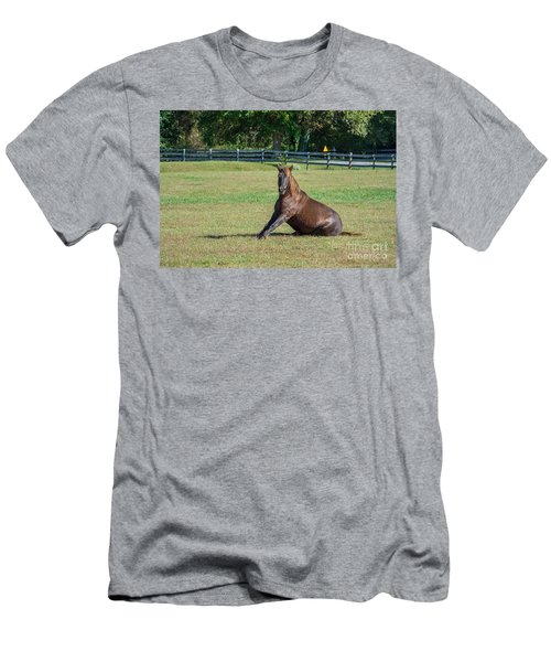 Equestrian Beauty Men's T-Shirt (Athletic Fit)