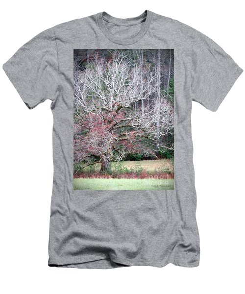 Fall At Cades Cove Men's T-Shirt (Athletic Fit)