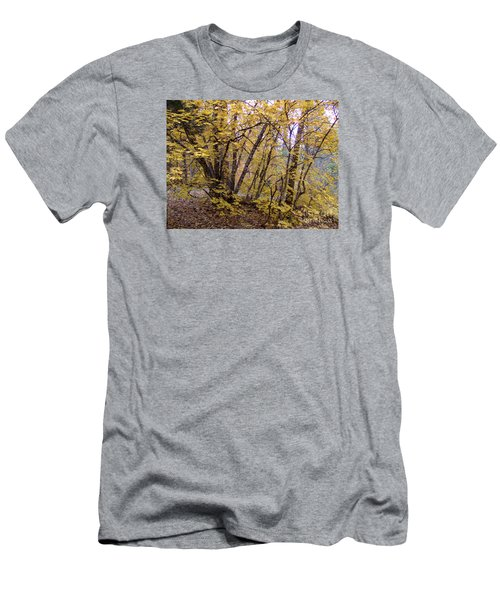 Fall Colors 6435 Men's T-Shirt (Athletic Fit)
