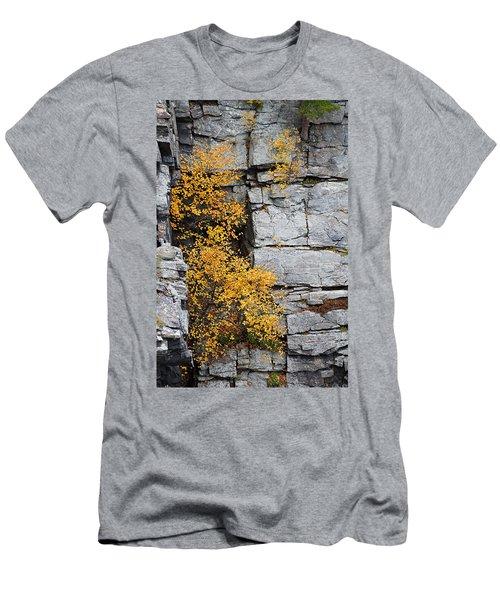 Fall Foliage Colors 01 Men's T-Shirt (Athletic Fit)
