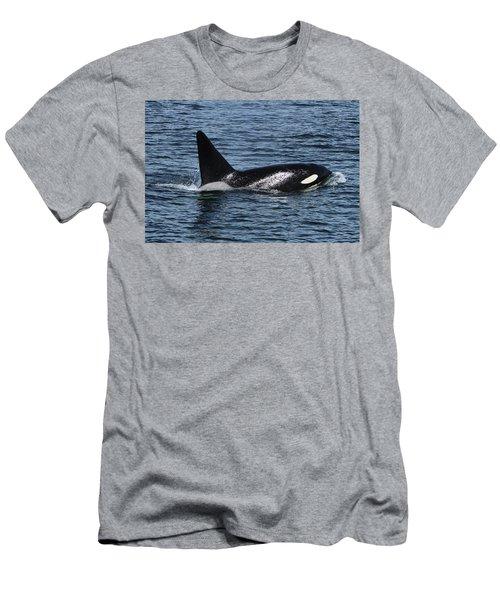 Fat Fin Aka Ca171b Men's T-Shirt (Athletic Fit)