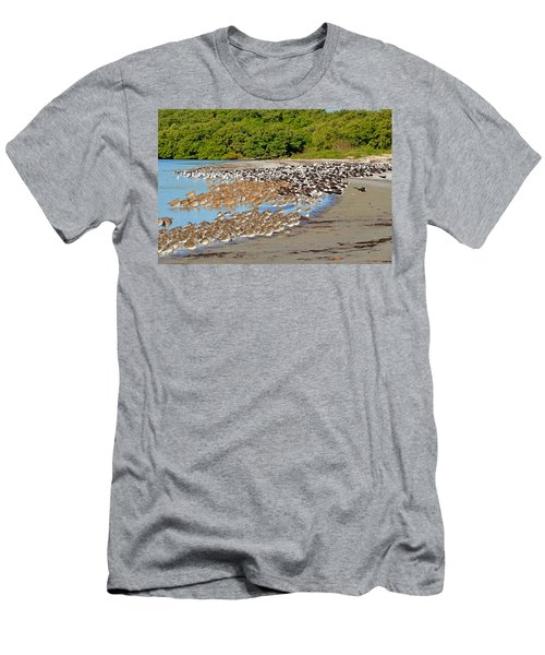 Four Species Of Birds At Roost On Tampa Bay Beach Men's T-Shirt (Slim Fit) by Jeff at JSJ Photography