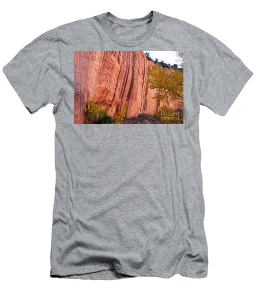 Fremont River Cliffs Capitol Reef National Park Men's T-Shirt (Athletic Fit)