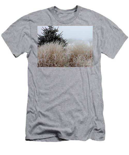 Frosted Grasses Men's T-Shirt (Slim Fit) by Debbie Hart