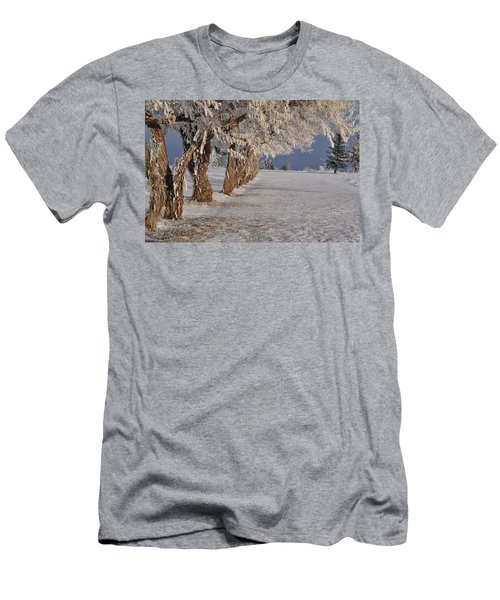 Frosted Trees Men's T-Shirt (Athletic Fit)