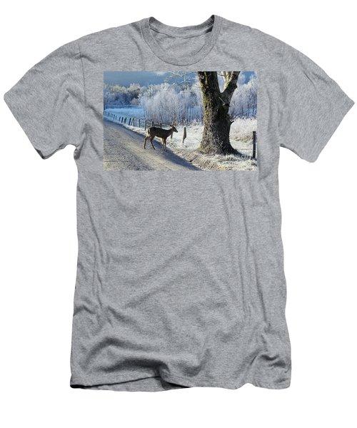 Frosty Cades Cove II Men's T-Shirt (Slim Fit) by Douglas Stucky