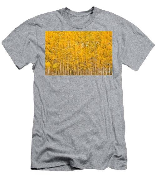 Fullness Of Gold Men's T-Shirt (Athletic Fit)