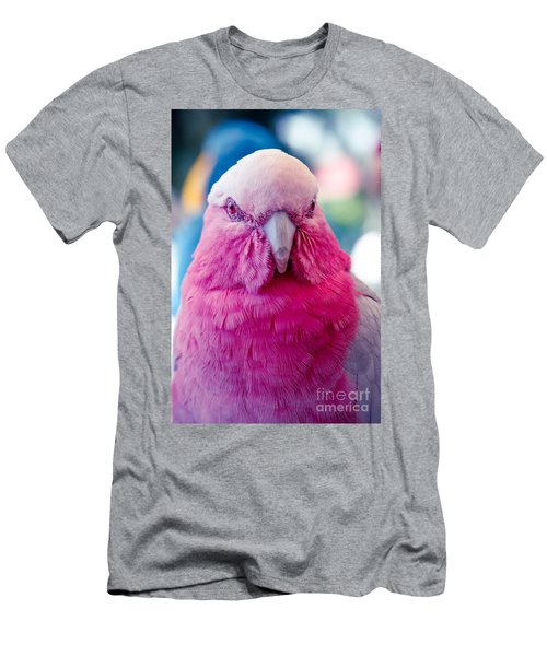Galah - Eolophus Roseicapilla - Pink And Grey - Roseate Cockatoo Maui Hawaii Men's T-Shirt (Slim Fit) by Sharon Mau