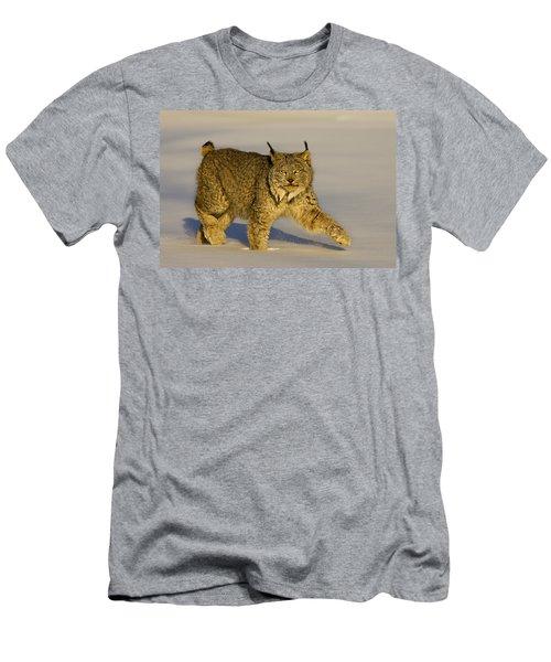 Gaze Men's T-Shirt (Athletic Fit)