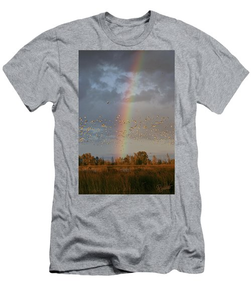 Geese And Rainbow Men's T-Shirt (Athletic Fit)