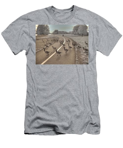 Geese Crossing Men's T-Shirt (Athletic Fit)