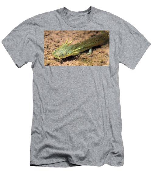 Gills Men's T-Shirt (Athletic Fit)