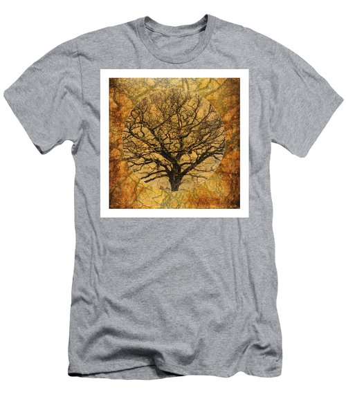 Golden Autumnal Trees Men's T-Shirt (Athletic Fit)