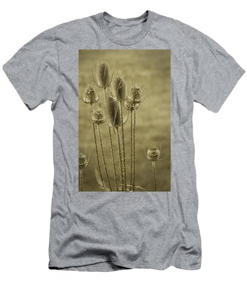 Golden Thistles Men's T-Shirt (Athletic Fit)