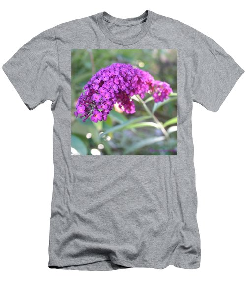 Good Morning Purple Butterfly Bush Men's T-Shirt (Athletic Fit)