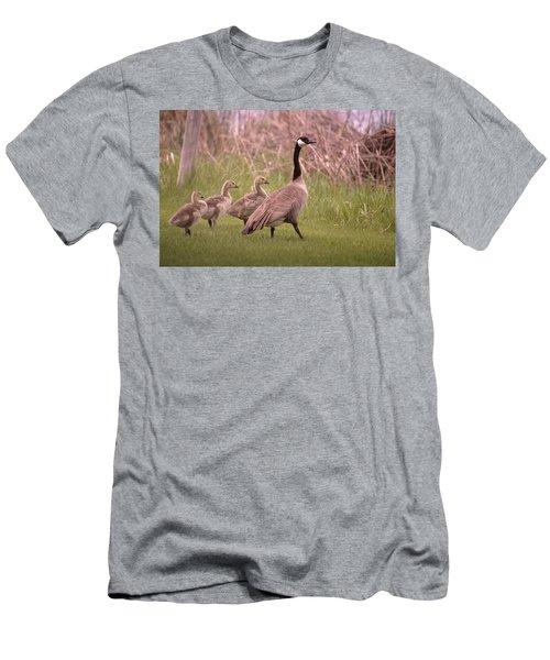 Goslings On A Walk Men's T-Shirt (Athletic Fit)
