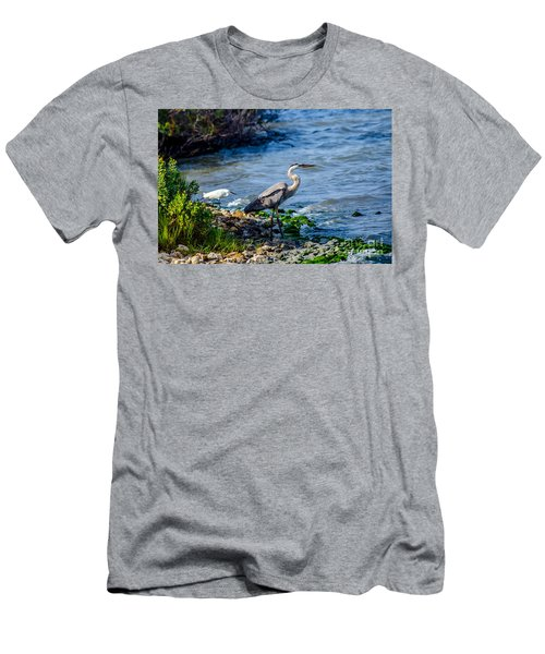 Great Blue Heron And Snowy Egret At Dinner Time Men's T-Shirt (Athletic Fit)