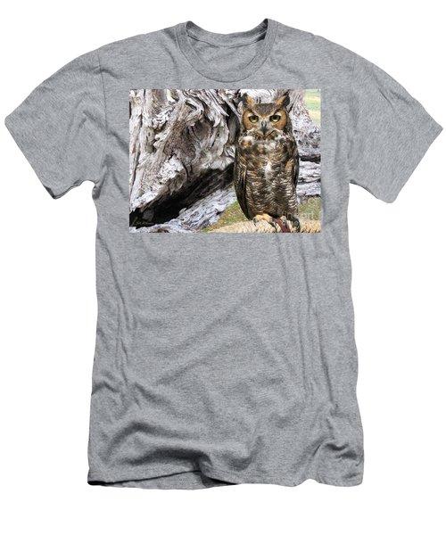 Great Horned Owl Ambassador Men's T-Shirt (Athletic Fit)