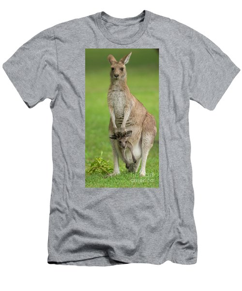 Grey Kangaroo And Joey  Men's T-Shirt (Athletic Fit)