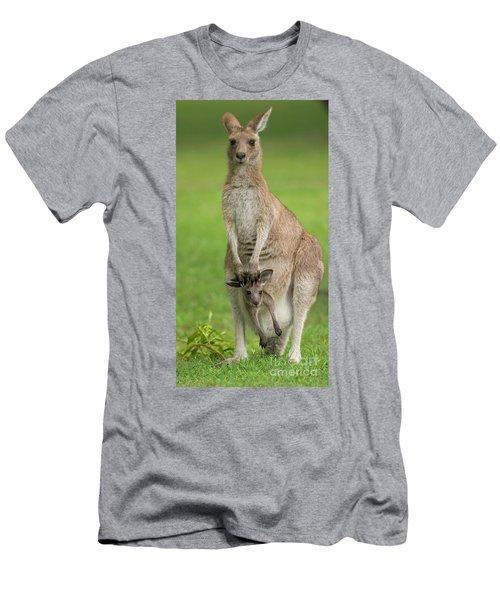 Grey Kangaroo And Joey  Men's T-Shirt (Athletic Fit)
