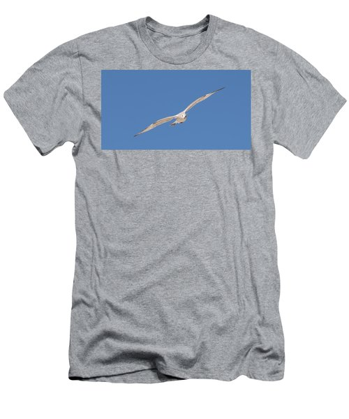 Gull In Flight - 2 Men's T-Shirt (Athletic Fit)
